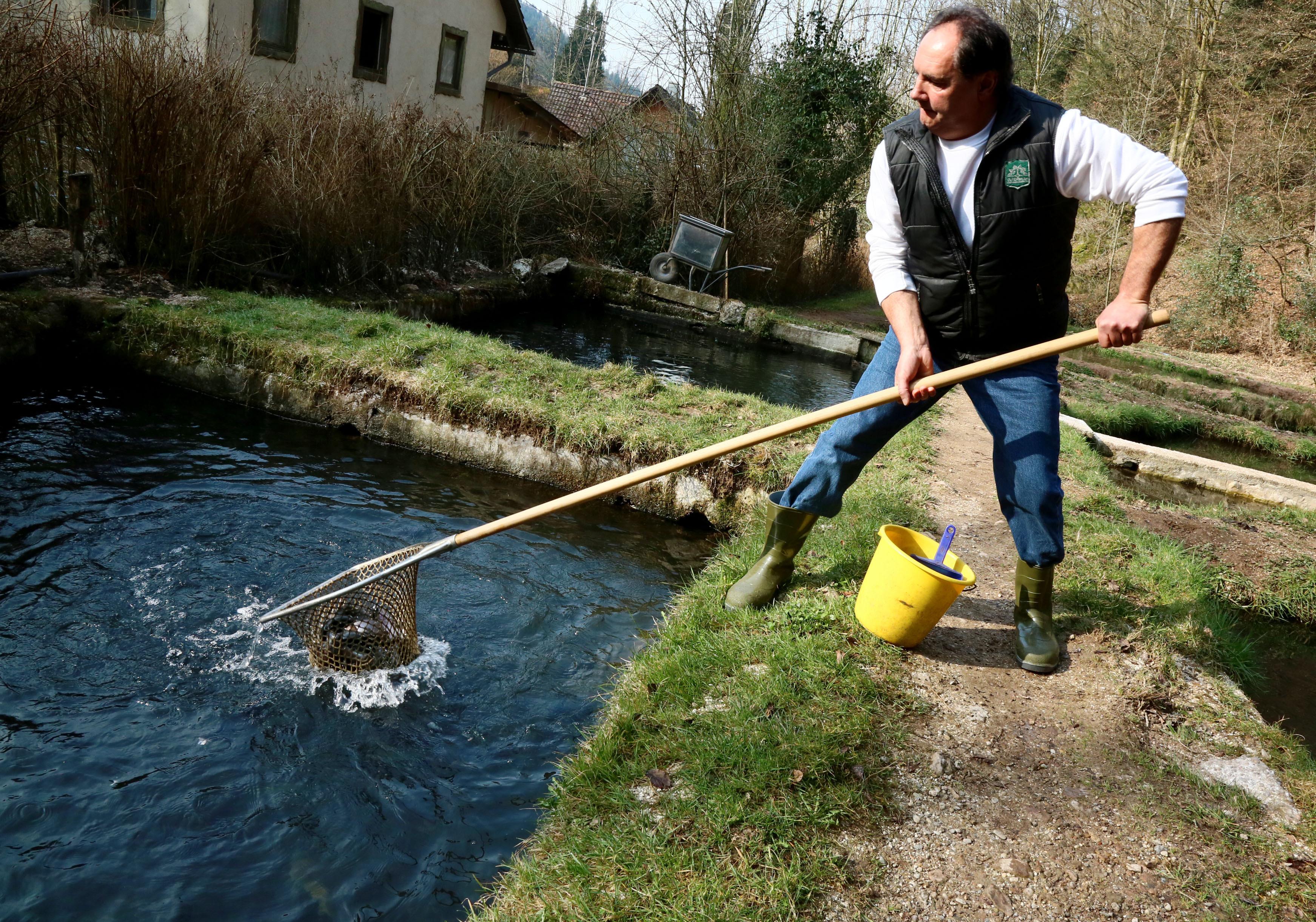 Fischzucht Rösch