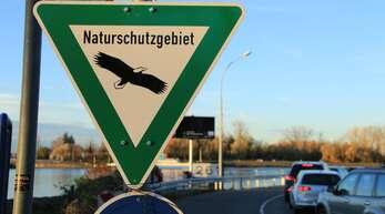 Eine Seilbahn zwischen Frankreich und dem Europa-Park soll den Verkehr entlasten. Die Umweltverbände wollen Alternativen zum Bauwerk durch den Taubergießen vorschlagen.