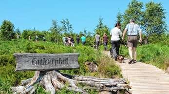 Eine neue GmbH mit 19 Kommunen soll die Zusammenarbeit im Nationalpark festigen.