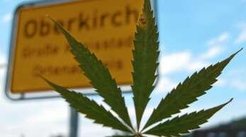 Rund 300 Drogenabhängige sind den Suchtberatern im Ortenaukreis bekannt, die Dunkelziffer ist ihren Angaben zufolge jedoch groß.