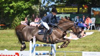 Barbara Steurer-Collee (Alpirsbach) gewann mit Quantus die wichtigste Prüfung in Legelshurst.