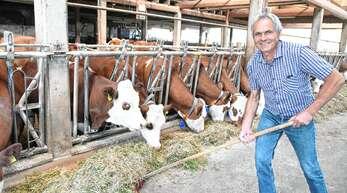Auf einem Bauernhof mit Milchwirtschaft gibt es kein freies Wochenende. Kühe müssen auch sonn- und feiertags gemolken werden.