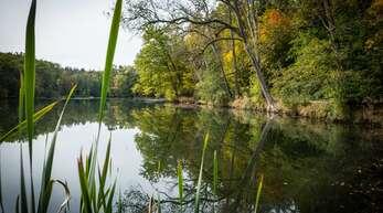 Der Katzenbachsee musste am Samstag für Besucher gesperrt werden. (Archivfoto von 2016)