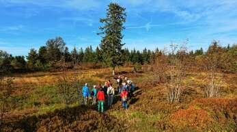 Nicht um Massentourismus, sondern um das Naturerlebnis, beispielsweise in kleinen Gruppen bei Führungen, geht es im Nationalpark Schwarzwald. Das Naturschutzprojekt soll der Region touristischen Auftrieb geben.