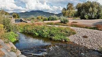 Nach der anhaltenden Trockenheit führen die Flüsse und Bäche im Ortenaukreis, wie hier die Kinzig, nur noch wenig Wasser. Angeln ist derzeit an Fließgewässern kaum möglich, um die Fischbestände nicht weiter zu dezimieren.