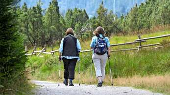 Im Schwarzwald waren dieses Jahr viele Wanderer unterwegs.