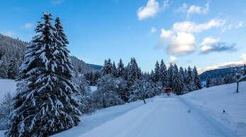Der Schwarzwald bietet derzeit beste Bedingungen für Skilanglauf.
