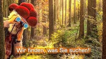 Sie suchen Arbeit in einer Region, in der andere Urlaub machen? acrobat Personaldienstleistungen in Achern rekrutiert Fachkräfte für Firmen in Baden.