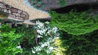 Die Profis von Gartenbau Lang schaffen grüne Oasen.