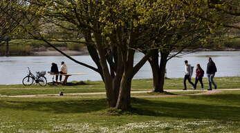 Wenn der Frühling in Kehl Einzug hält, dann erwacht nicht nur die Natur – so wie hier am Rhein – sondern es zieht auch die Menschen wieder raus an die frische Luft und zu den wärmenden Sonnenstrahlen. Gerade in der derzeitigen Corona-Zeit sind bestimmt viele Leute froh, dass – zumindest mit Abstand und der einen oder anderen Hygienemaßnahme – einem Spaziergang oder einer ausgiebigen Fahrradtour bei frühlingshaften Temperaturen nichts mehr im Wege steht.