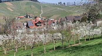 Blick auf den Ort und die Weinberge: Der Durbacher Klingelberg hat dem heimischen Riesling seinen Namen gegeben.
