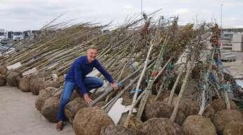 Der stellvertretende Betriebshofleiter Frank Wagner hat viel vor: Rund 2300 neue Bäume, Stauden, Gräser und Blumen werden künftig das Stadtbild schmücken.