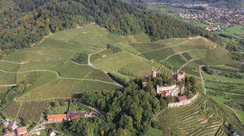 Für mehr als 420 Hektar bejagbare Fläche, davon 78 Hektar Wald und 340 Hektar Feld sowie zwei Hektar Wasserfläche, ist Florian Schüle in Ortenberg zuständig.