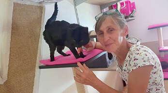 Der Tierschutzverein arbeitet in seinem Tierheim vorbildlich, lobte die Hausacher Stadtverwaltung, die dem Verein nun jährlich gut 50 Prozent mehr überweist.