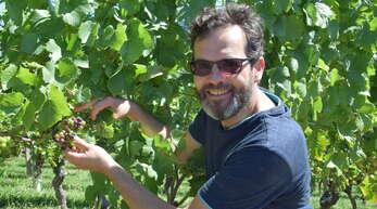 Im vergangenen Jahr war die Welt von Oberkirchs Qualitätsmanager Frank Männle noch in Ordnung: Die Auswirkungen des Frosts im April auf die Reben im Rench- und Achertal haben ihm die Laune aktuell erheblich verdorben.