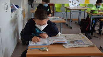 """Die erste Woche des Robby-Projekts """"Meine Reise durch die Zeitung mit Robby Rheinschnake"""" ist geschafft. Schüler der Mörburgschule Schutterwald berichten von ihren Erfahrungen."""