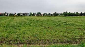 Hier soll ein insgesamt 8,3 Hektar großes Neubaugebiet entstehen.