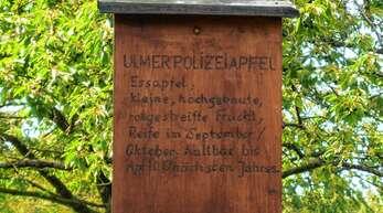 In Urloffen soll ein Obstlehrpfad, wie es diesen beispielsweise bereits auf Renchener Gemarkung gibt, angelegt werden.