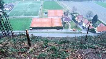 Am Haldenhof in Oppenau wütete Sturmtief Sabine. Im Herbst entsteht auf dieser Fläche ein Sparkassen-Wald.