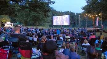 Die Leinwand für die Open-Air-Kino-Nacht wird in diesem Jahr nicht am Hesselhurster Waldsee aufgebaut, sondern auf demGelände des Reit- und Fahrvereins Legelshurst.