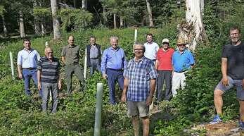 Der Verein Unser Waldhat 500 nordamerikanische Amberbäume als Pilotprojekt gegen den Klimawandel im Friesenheimer Gemeindewald gepflanzt