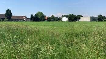 """Im nächsten Jahr soll es losgehen: Dann sollen zwischen der Neumühler Halle (rechts) und dem Gebiet """"Hühnerbünd I"""" 50 neue Wohneinheiten gebaut werden."""