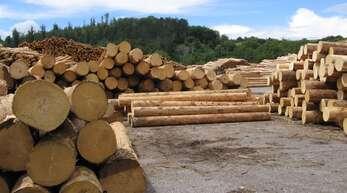Die Holzpreise treiben um: Frustrierend sei das, sagt ein Hornberger Landwirt mit Blick auf die mickrigen Erlöse der letzten Zeit – und hinsichtlich seines Arbeitspensums, das er wie so viele nach dem eigentlichen Job und in steilen Lagen abends und am Wochenende leistet.