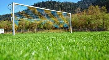 Wie wird das Grün im Wolfacher Stadion künftig in Form gehalten - und vor allem: von wem?