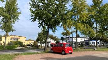 Auf diesem Parkplatz mit ÖPNV-Anschluss am Mühlenweg in Bodersweier könnte ab 2025 eine Mobilitätsstation entstehen.