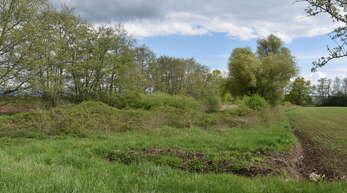 """Im Gewann """"Stickfinster"""" soll nun, wie es schon seit vielen Jahren eigentlich vorgesehen war, ein Regenrückhaltebecken angelegt werden."""