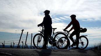 Die Nachfrage nach Zweirädern bleibt hoch. Besonders Pedelecs und E-Bikes sind beliebt. Deshalb müssen sich Verbraucher auf lange Wartezeiten bei den Händlern einstellen.