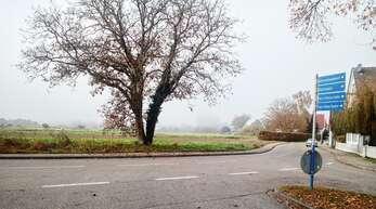 """Am """"Alfengraben"""" sind von ursprünglich geplanten 20 Bauplätzen nur drei realisierbar, mehr Bauland gibt es in Linx danach nicht mehr."""