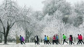 280 Sportler liefen gegen die Kälte an.