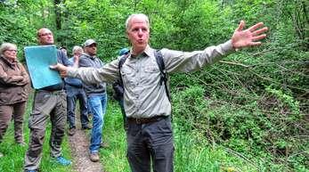 Förster Gunter Hepfer war mit Meißenheims Gemeinderäten im Rheinauenwald unterwegs. Es ging dabei um die Themen Japanknöterich und »wilder Wald«.