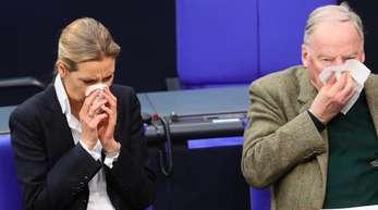 Wegen der Umfragewerte verschnupft? AfD-Fraktionschefin Alice Weidel und Alexander Gauland putzen sich synchron die Nase.
