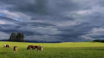 Im Süden des Landes muss weiter mit Regen gerechnet werden.