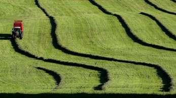 Ein Landwirt in Bayern bringt im Abendlicht das frisch gemähte Gras ein. Die heißen Tage machen erstmal eine kurze Pause. Eine Kaltfront zieht über das Land von Nordwest nach Südost. Foto. Karl-Josef Hildenbrand