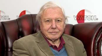 """Sir David Attenborough bei der Vorstellung seines Films """"Natural Curiosities"""" 2015 in London."""