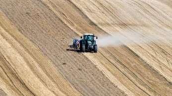 Deutsche Bauern sind im Gegensatz zu ihren Kollegen in den USA, Frankreich und anderen Ländern in der Regel nicht gegen Dürre versichert.