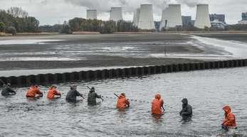 Mitarbeiter der Peitzer Edelfisch GmbH ziehen an langen Holzstangen ein Netz durch einen fast abgelassenen Karpfenteich.