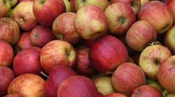 In diesem Jahr werde die Apfelernte bei 1,1 Millionen Tonnen liegen.