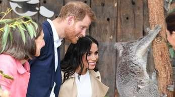 Prinz Harry und Herzogin Meghan sehen sich im Taronga Zoo den weiblichen Koala «Ruby» an, die ein nach Meghan benanntes junges mit dem Namen «Joey Meghan» geboren hatte.