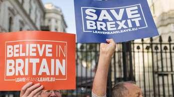Brexit-Befürworter demonstrieren vor Downing Street 10, wo das britische Kabinett zum Brexit tagt.