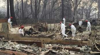 Freiwillige Rettungskräfte suchen in den Trümmern von Häusern nach menschlichen Überresten.