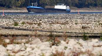 Grund für die Lieferengpässe ist vor allem der niedrige Rheinpegel - deshalb können Tankschiffe nur noch halb so viel oder noch weniger Benzin und Diesel transportieren.