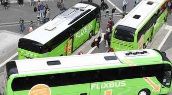 Busse des Unternehmens Flixbus stehen am Hauptbahnhof in Frankfurt am Main.