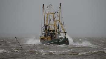 Deutsche Nordsee-Fischer müssen im kommenden Jahr mit deutlich niedrigeren Fangmengen auskommen.