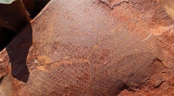 Die Gravuren dokumentieren die Reisen zweier Walfangkutter von ihren Heimathäfen im Nordosten der USA zum Dampier-Archipel im Nordwesten Australiens.