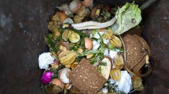 Lebensmittel liegen in einer Bio-Mülltonne.