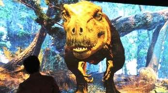 Ein interaktives Videospiel in der Ausstellung «T. rex: The Ultimate Predator».